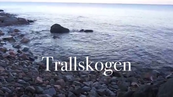 Trallskogen - Trollskogen 2017 Album Trailer - YouTube 2017-09-06 20-36-33